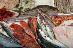 pesci1