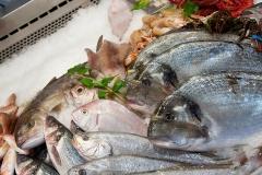 pesci3