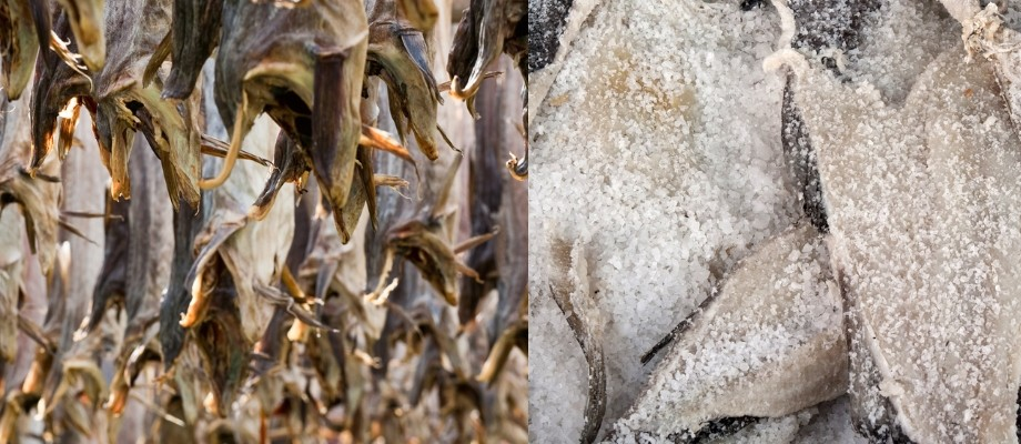 Merluzzo, Stoccafisso e Baccalà: vediamo le differenze
