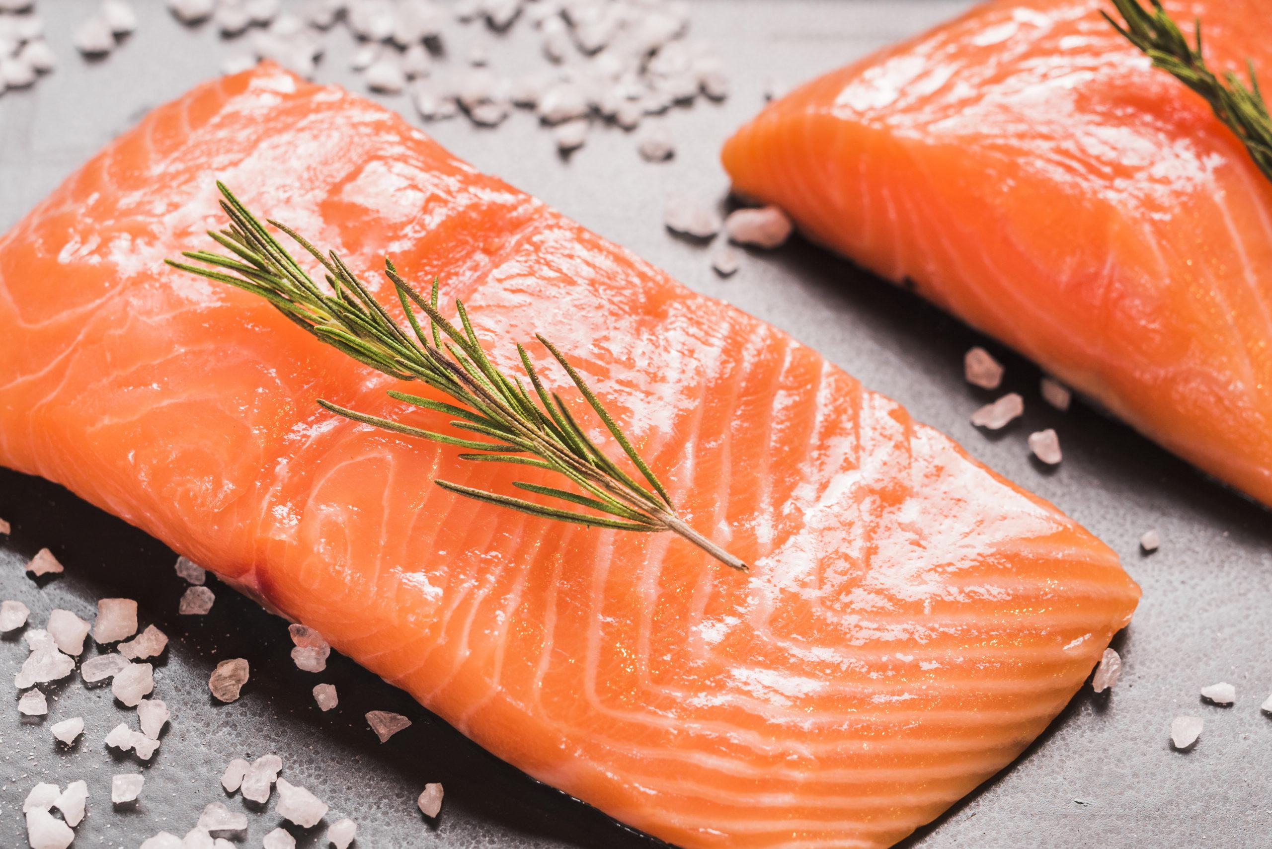 Il salmone: uno tra i pesci più amati al mondo